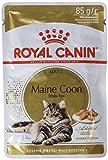 Royal Canin Cibo Umido per Gatti Maine Coon - Confezione da 12 x 85 grammi