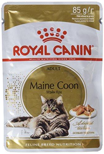 Royal Canin Feline Adult Maine Coon Pouch - Caja 12X85Gr 1020 g ✅