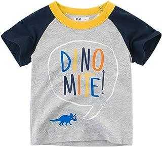Fairy Baby Toddler Boys Summer Short Sleeve T-Shirt Graphic Tops Tee Cartoon Shirt