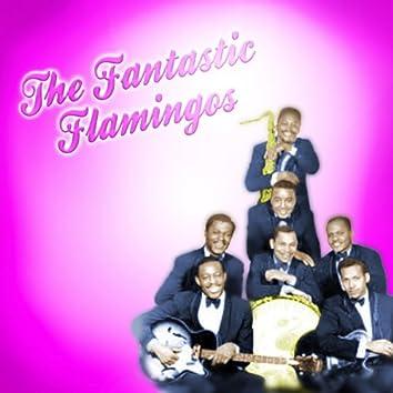 The Fantastic Flamingos
