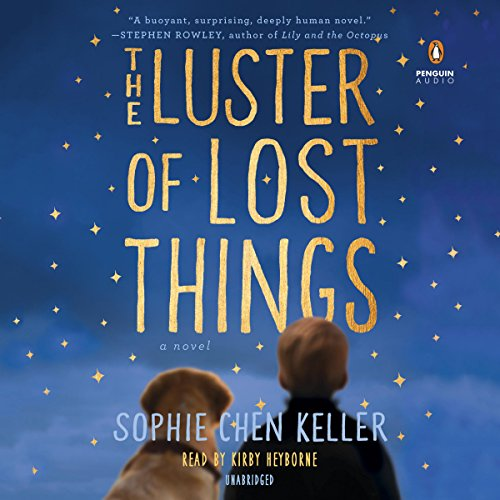 The Luster of Lost Things audiobook cover art