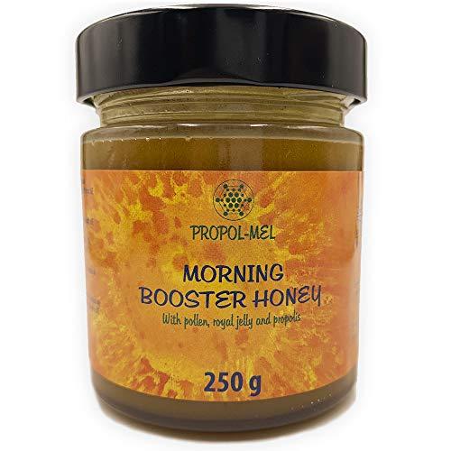 Miel con Propoleo, Jalea Real pura y Polen de abeja x 250 g. Morning booster, el mejor bio-estimulador para el cuerpo humano. Energizante y revitalizante de las fuerzas vitales del cuerpo.