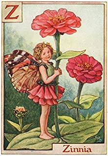 Z = Zinnia Fairy by Cicely Mary Barker. Alphabet Flower Fairies - c1934 - old print - antique print - vintage print - Flower Fairies art prints