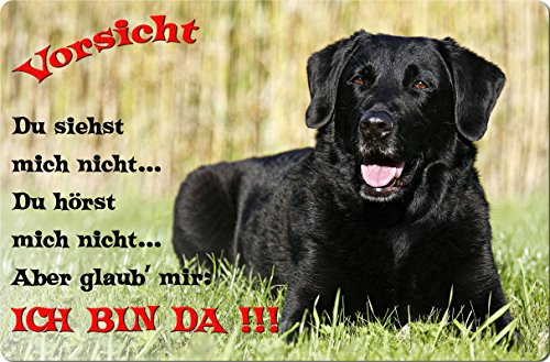 +++ LABRADOR Retriever - Metall WARNSCHILD Schild Hundeschild Sign - LAB 50 T2 S