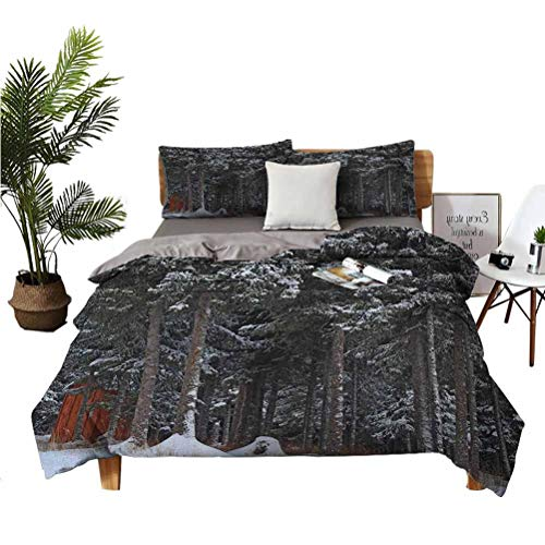 Outhouse Wrinkle-Free Breathable Refreshing Refreshing to The Touch Luxurious Cotton 3-Piece Set Winter Forest in Snow with Little Cute Barn Lumberjack Shed Art Photo Suitable for Any Bedroom or Gues