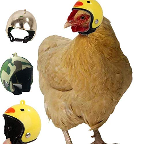 N/ A Bird Hat Headwear Chicken Helmet Pet Helmets Bird Hat Headgear Funny Pet Helmet Costumes Accessories for Chicken Small Pet Hard Hat Suitable for Chickens Hens Pet Bird Newcomer