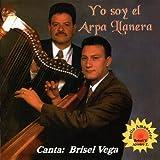 Yo Soy el Arpa Llanera (Golpe)