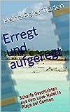 Erregt und aufgeregt: Scharfe Geschichten aus dem Love-Hotel in Playa del Carmen (Love-Hotel Karibische See 98) (German Edition)