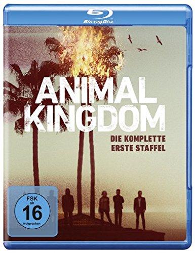 Animal Kingdom - Die komplette 1. Staffel [Blu-ray]
