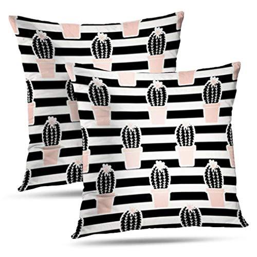 Catus - Fundas de almohada decorativas a rayas, juego de 2 fundas de cojín cuadradas con patrón dibujado con plantas de cactus, negro y rosa pastel, para decoración de granja, sofá, dormitorio, 2 lado