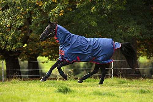 Horseware Amigo Mio All-In-One Turnout lite Dark Blue & red Regendecke mit Halsteil Gr. wählbar (155)