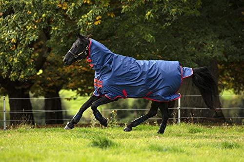 Horseware Amigo Mio All-In-One Turnout Heavy 350g Dark Blue & red Winterdecke mit Halsteil (140)