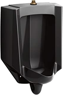 Best wall hung urinal Reviews