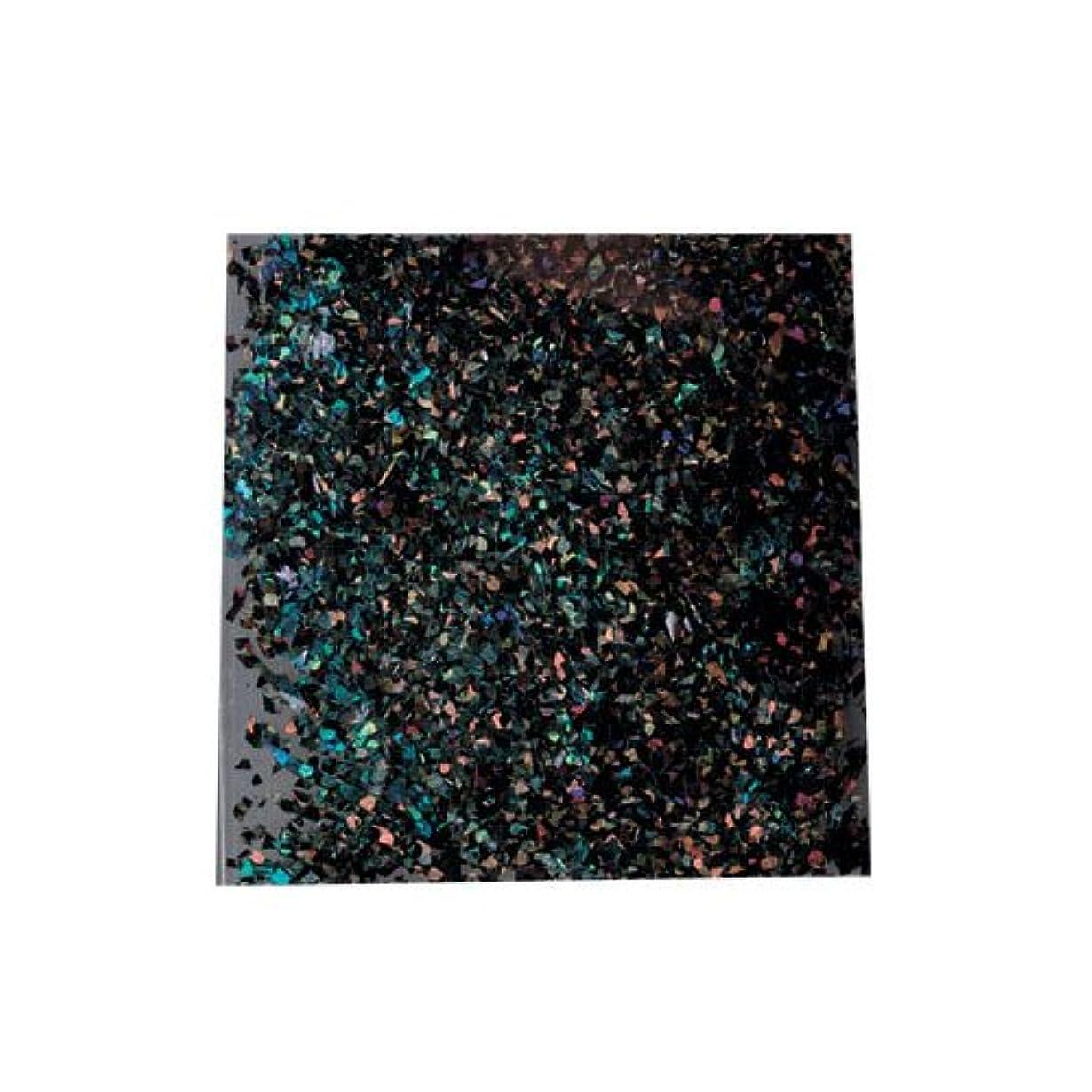 放射する地震有害なピカエース 乱切ホロ #897 ブラック 0.5g アート材
