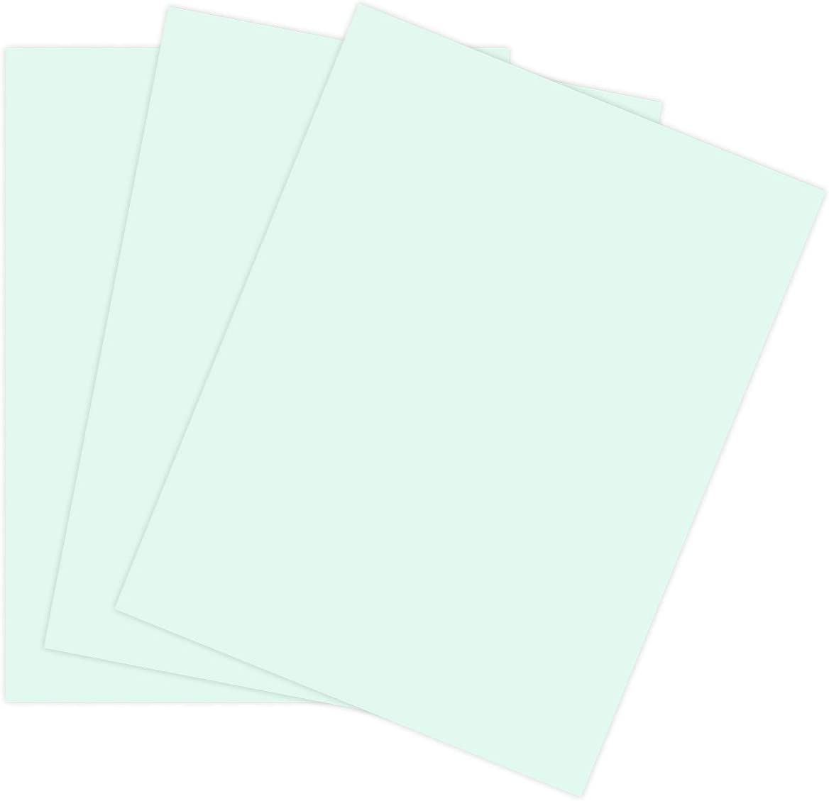 Cardstock Paper for Arts Crafts Department store and Stamps Scrapbooking The 100% quality warranty! o by