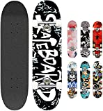 Smibie Skateboards Pro 31 inches Complete Skateboards for Teens Beginners Girls Boys Kids Adults, 9 Layer Maple Wood Skateboard (6: Letter)