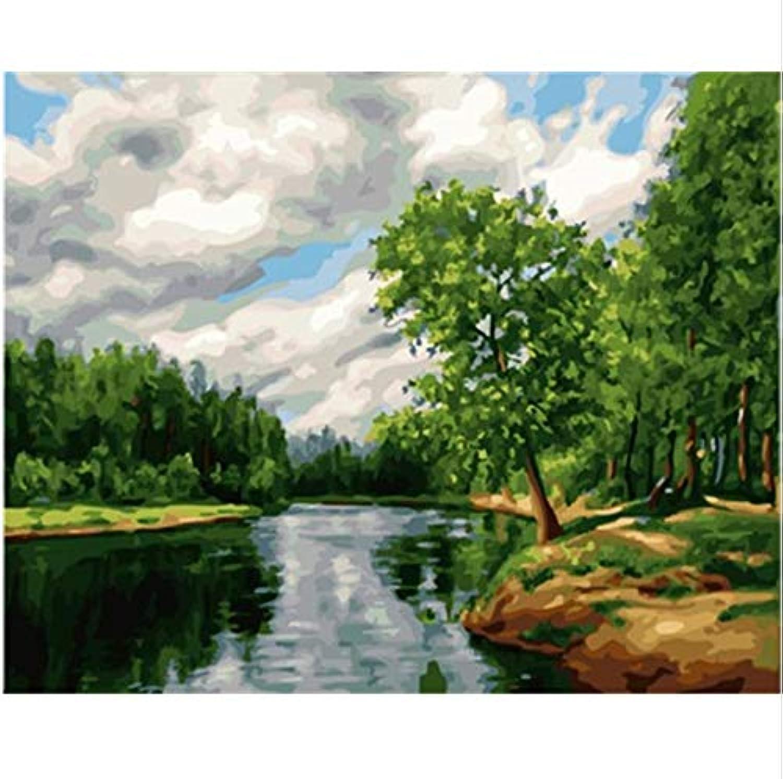 WYTCY Mit Rahmen Landschaftsbilder Malen Nach Zahlen Malen Und Kalligrafie DIY Malen Nach Zahlen Auf Leinwand 40X50Cm B07PCT4Q8H | Bunt,