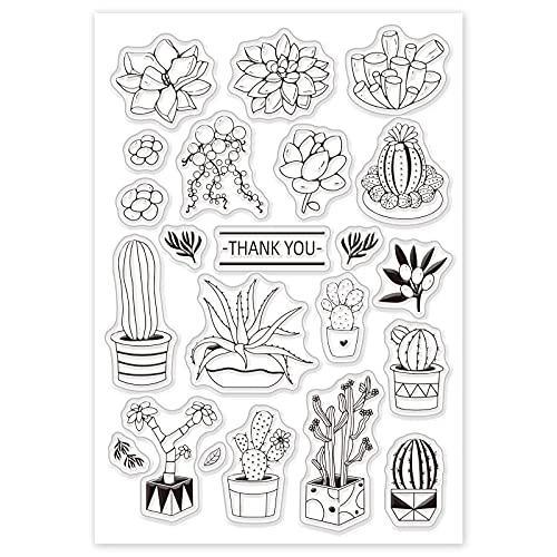 GLOBLELAND Naturlig kaktus suckulenter mönster akrylstämplar chic stil gummistämplar silikon klara frimärken för scrapbooking album kort foto dekor, 160 x 110 mm