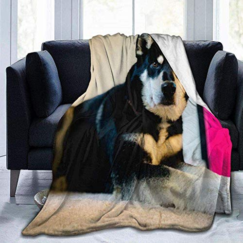 FETEAM Manta Suave, cálida, Buena para Perros, Manta para Perros esquimales, Ligera, para la Siesta de guardería, Manta para niños