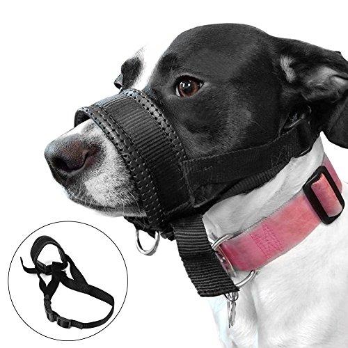 Cesta de Silicona para Perros, Mejor para Evitar mordeduras, Masticar y glande, Permite Beber y echar, Utilizada con Cuello.