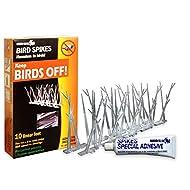 Bird X Plastic Bird Spikes Narrow