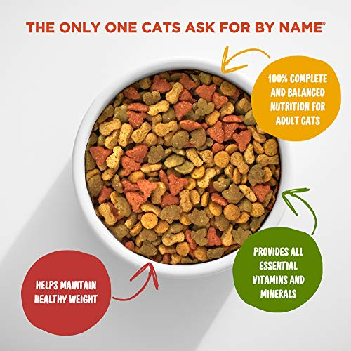 Cat | Meow Mix Indoor Health Dry Cat Food, 14.2 Pounds, Gym exercise ab workouts - shap2.com