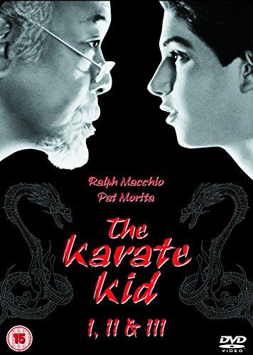 The Karate Kid / Karate Kid 2 / Karate Kid 3 [3 DVDs] [UK Import]