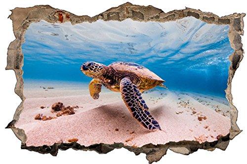 Schildkröte Meer Unterwasser Sand Wandtattoo Wandsticker Wandaufkleber D1311 Größe 70 cm x 110 cm