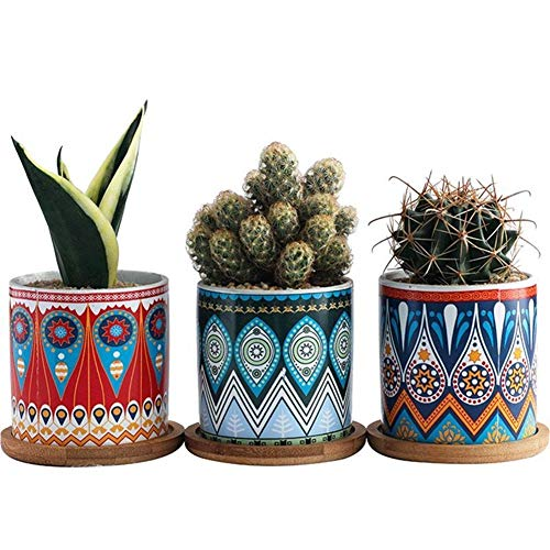 3 stks Keramische Succulente Plant Bloem Pot Patroon Keramische Bloemenhouder (Red, Blauw En Groen Met 3 Bamboe Lade Zonder Plant)