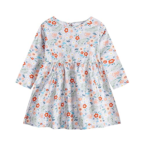 Vestidos de bebé para niñas - Ropa de bebé Niñas - Vestido de manga larga de una pieza con estampado floral de princesa vestido de otoño para niños (6 meses a 3 años), gris, 2-3 Años