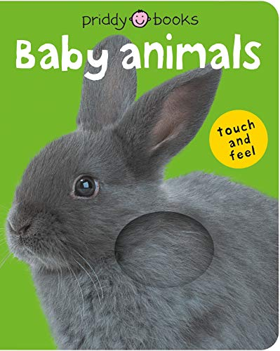 Touch & Feel Books are sized right for a toddlers Easter basket stuffer