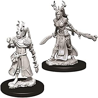 WizKids D&D Nolzur's Marvelous Miniatures - Female Human Druid