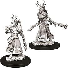 Dungeons & Dragons Nolzur`s Marvelous Unpainted Miniatures: W9 Female Human Druid