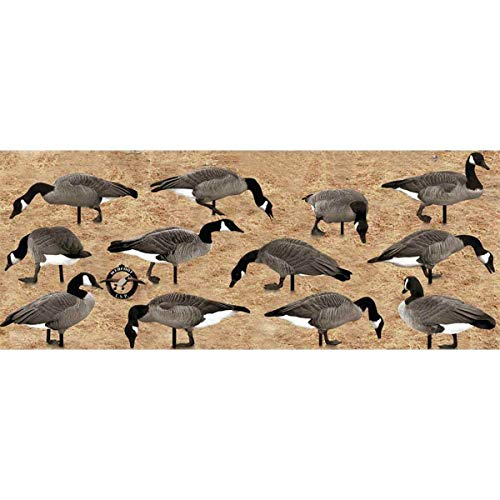 Real Geese Pro Series II Silhouette Canada Goose Decoys 12PK