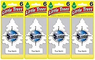 LITTLE TREES Car Air Freshener | Hanging Paper Tree for Home or Car | True North | 24 Pack