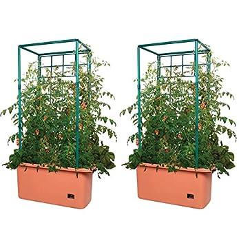 Hydrofarm GCTR 10 Gal Tomato Trellis Self Watering Garden Grow System on Wheels  2 Pack