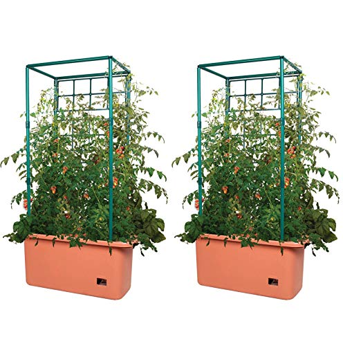 10 Gal Tomato Trellis Self Watering Garden Grow System on Wheels