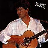Songtexte von Francis Cabrel - Cabrel public