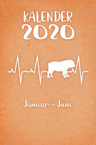 Kalender 2020: Oranger Tageskalender Englische Bulldogge Herzschlag Hunde 1. Halbjahr Januar Juni ca DIN A5 weiß über 190 Seiten