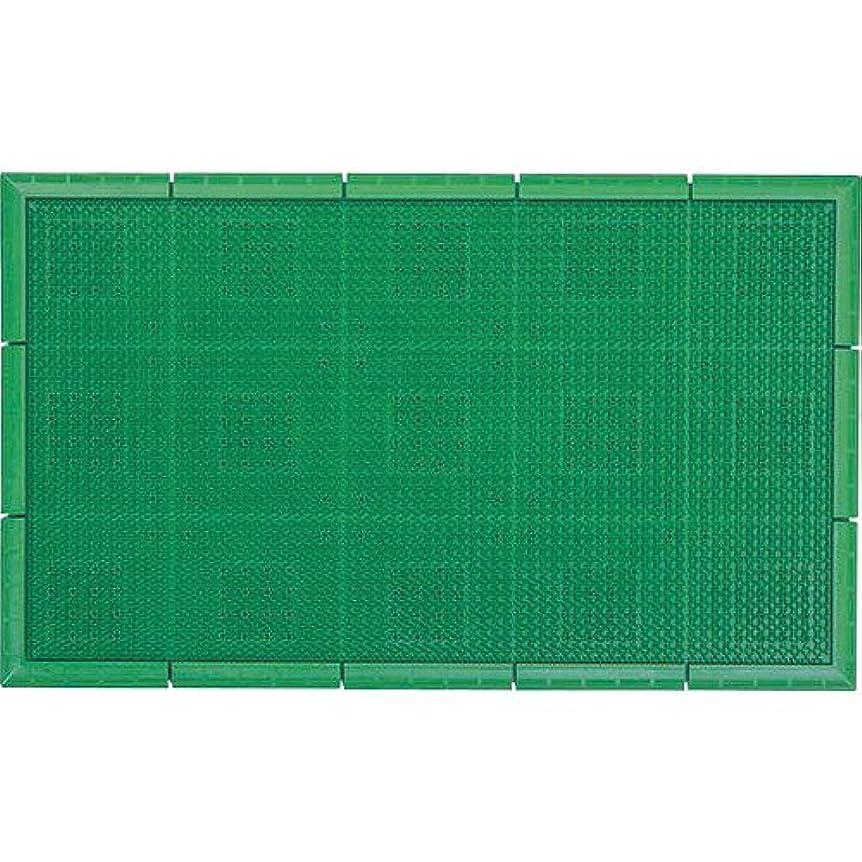 カトリック教徒教科書応じるエバックサンステップマット 45×60 グリーン 404858