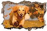 DesFoli Hund Welpe Dog 3D Look Wandtattoo 70 x 115 cm Wanddurchbruch Wandbild Sticker Aufkleber D576