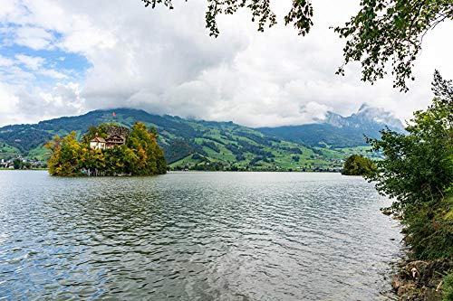 LFNSTXT Rompecabezas para adultos, 1000 piezas, Isla de Schwanau de Suiza en la isla del lago para adultos, familias y niños. Juguete educativo para decoración del hogar (27.6 x 19.6 pulgadas)