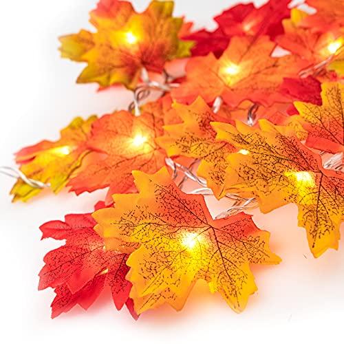 Ventvinal Ahornblätter Lichterketten, 20 LED Herbst-Ahornblatt-Girlande Lichtern 3AA batteriebetrieben Herbst Blättergirlande Dekoration Lichter für Party, Weihnachtsbeleuchtung, Erntedankfest