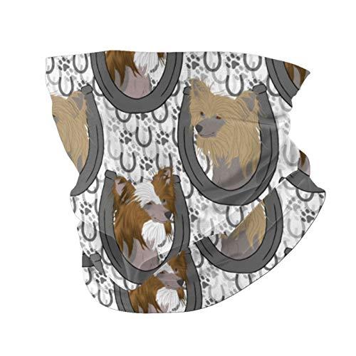 Ccycjasdkfewl Pañuelo sin pelo chino con diseño de herradura retratos, máscara multiusos para pasamontañas, polainas reutilizables para bufanda, pasamontañas y motocicleta con bolsillo interior