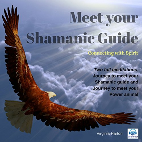 Meet Your Shamanic Guide audiobook cover art
