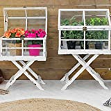Mini serra in legno e vetro Legno Bianco