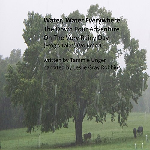 Water, Water, Everywhere: The Down Pour Adventure on the Very Rainy Day audiobook cover art