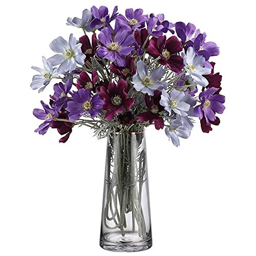 Roylvan Glas Vase, 8.7 Zoll / 22 cm Blumen Vase mit Goldener Linie Öffnug Moderne Klare Blumentöpfe Dekorative...