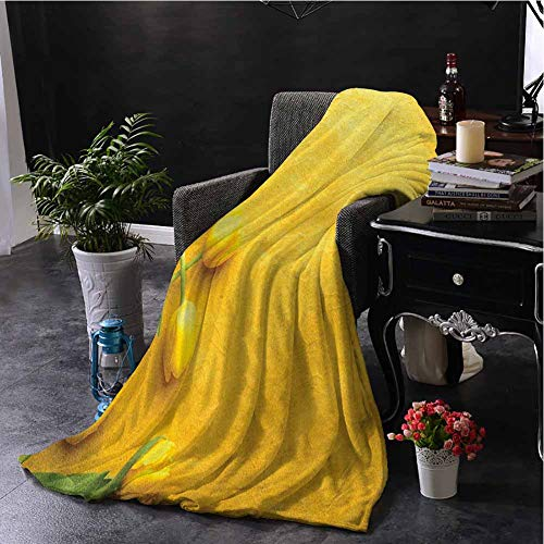 Luoiaax Yellow Commercial Grade Printed Blanket Danish Dutch Tulips on Colored Wall Garden Floral Love Lily Herbs Artful Print Queen King W57 x L74 Inch Yellow Green