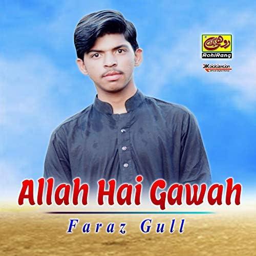 Faraz Gull
